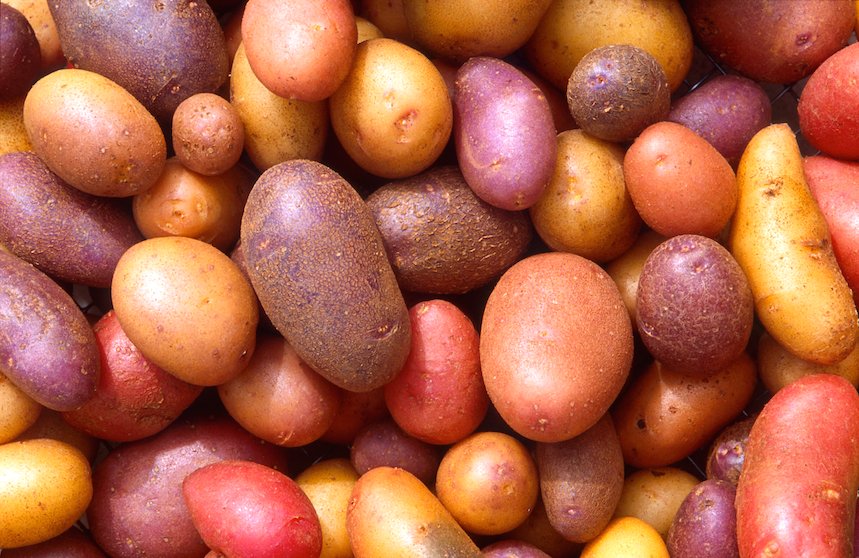 Random Dense packing of spheroids (potatoes). Image K9152-1: US Agricultural Research Service (no copyright).
